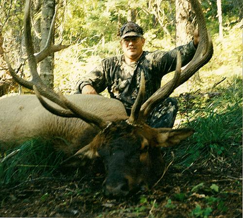 Archery Elk - Steve