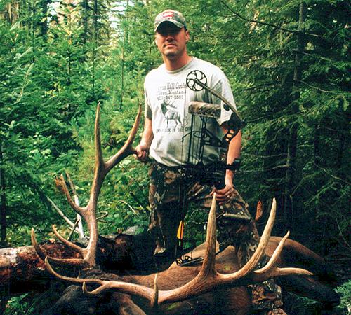 Archery Elk - Steve N.